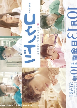 Kounodori 2 (2017)