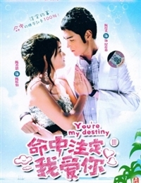 Fated to Love You (2008)